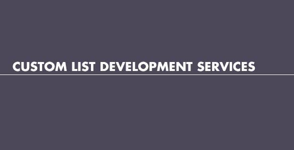 Custom list development services